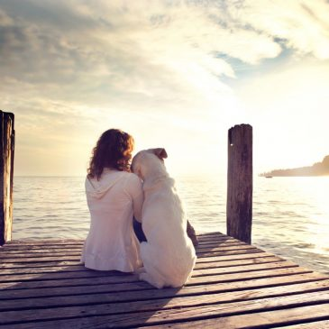 Pet Euthanasia – a Gift of Love