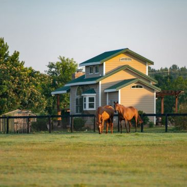 Why Equestrians Are Buying Property in Aiken, S.C.